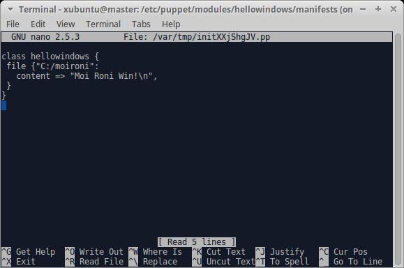 Terminal - xubuntu@master: -etc-puppet-modules-hellowindows-manifests_007